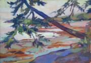Leaning Pine, Gulf islands BC14 x 16in acrylic