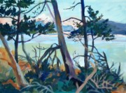 Mount Baker, from East Point, Saturna BC acrylic 17 x 20in - Copy (2)