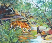 Ranthambore Tiger acrylic 16 x 20in